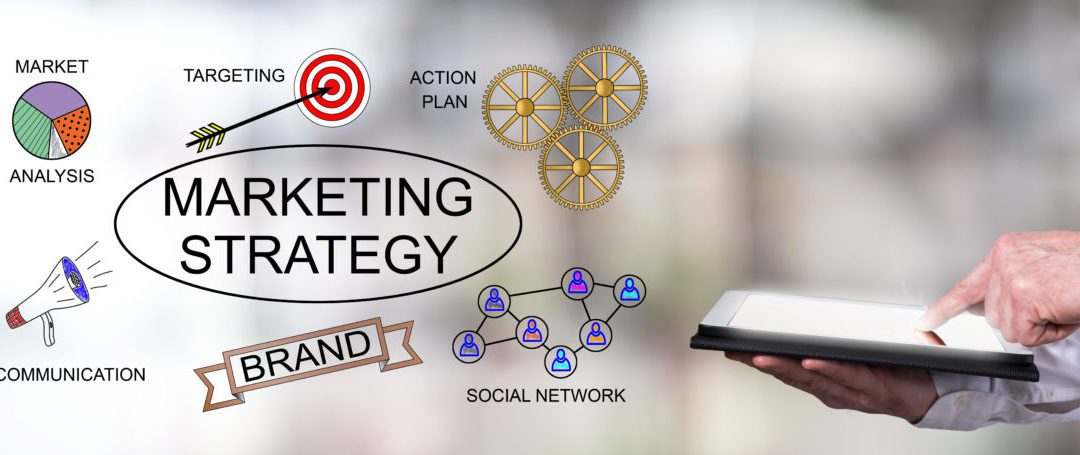 Adapting Your SEO Strategy When Your Business Changes